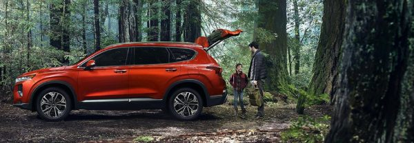 2019 Hyundai Santa Fe in the woods with trunk open and father and son loading camping equipment
